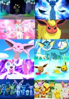 Eevee and Friends Collage
