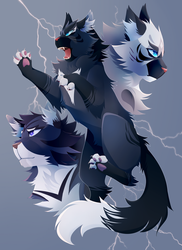 STORMS FOR EYES by shinotori