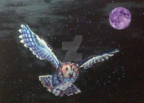 Space Owl