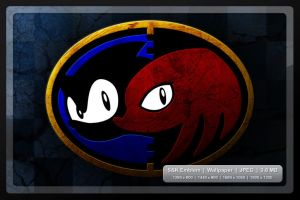 Sonic and Knuckles by AidanH