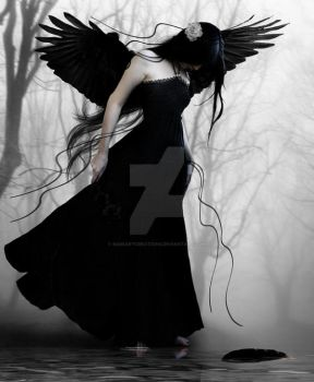 Black Feather by babsartcreations