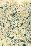 Marbled Paper: 7 by tryingtimes