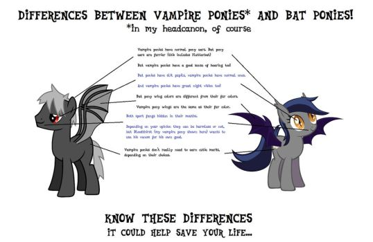 Know the Differences: Vampire and Bat Ponies by NgKQ