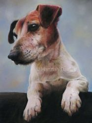 Jack Russell Terrier Paws for Thought by animalsinart