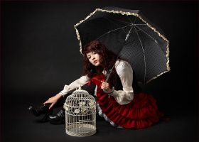 Ruffles, Lace, and Birdcage by InnocencelostxX