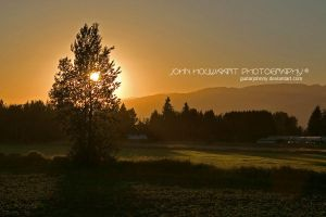 Gloaming by guitarjohnny