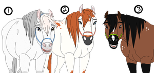 Purebred Horse adopts-CLOSED by TwilightLuv10