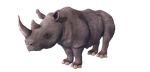 RHINO LOW POLY 3D MODEL by charmainenomnom
