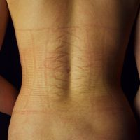 Corset Lines by phydeau