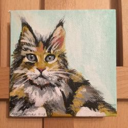 Maine Coon Kitten on Tiny Canvas by NikSebastian