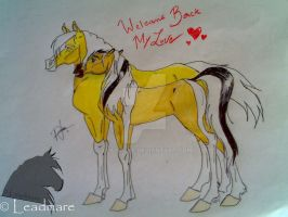 Welcome Back My Love by Leadmare