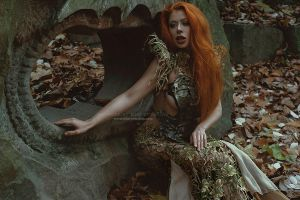 Fallen leaves by Ophelia-Overdose