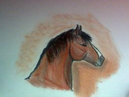 Cheval by Dictina