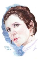 Star Wars Leia Organa (Carrie Fisher) by DANDG