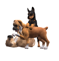 Puppy Pile Stock png by Direwrath