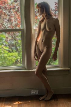 Window Light by CameoMichelle