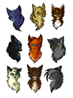 Warrior Cats sketch dump by kitty-skeleton