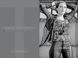 Leather and Transparencies by daaram