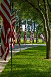 Memorial Day by Vickithtoria