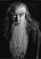 Gandalf by Skippy-s