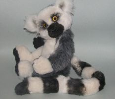 Agathon the Ring Tailed Lemur by gokdoggo