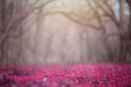 Pink Meadow Background by little-spacey