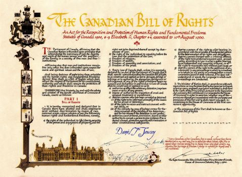 The Canadian Bill of Rights by danieltowsey