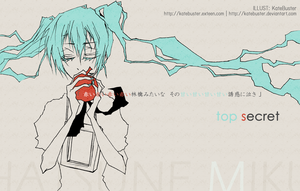 VOCALOID - MIKU - TOP SECRET by KateBuster