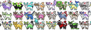 30 cat adopt [offer your price] 9/30 OPEN by colouradopts