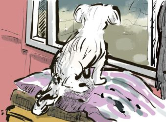 Theo at the Window by LauraSeabrook