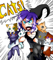 Shadow Likes Cats by Ask-Sassy-Vaati