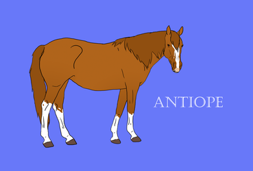 GB Antiope by Happy-Horse-Stable
