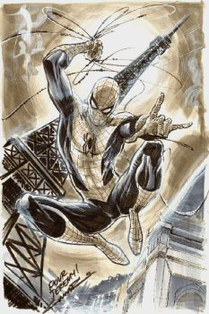 Spider Man in Paris by Cinar