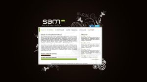 SAM Developer blog - v.1 beta by Ingnition