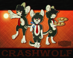 CRASHWOLF by spinnando