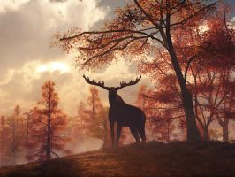 A Moose in Fall by deskridge
