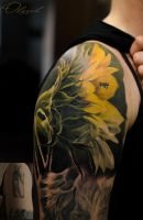 Sunflower by Olggah