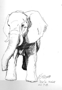 Elephant requested by Evo-MadHatter