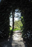 Gate to the Secret Garden by brightling