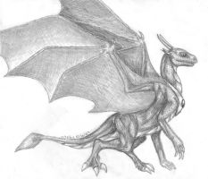 Dragonness Wyverna by delbinfang