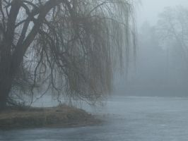 Foggy Pond 7 by pelleron-stock