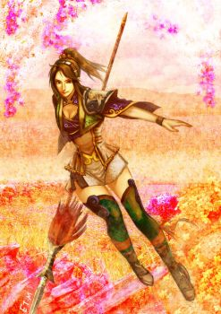 Fan Chara of Dynasty Warriors by E09ETM