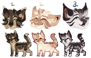 Kitty adopts with headshots [ OPEN AUCTION ] by Pawses