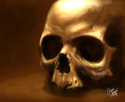 color practice | skull by Agapka