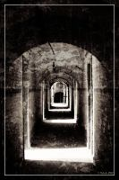 The grid is at the end of the corridor by 0-Photocyte