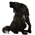 Black Wolf by TokoTime