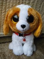 Ty Beanie Boo Beagle-Cookie (2013 Version) by ShadoweonCollections