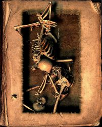 Skin and Bone Book, Version 3 by james119