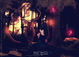 The Stag by bunnycore1