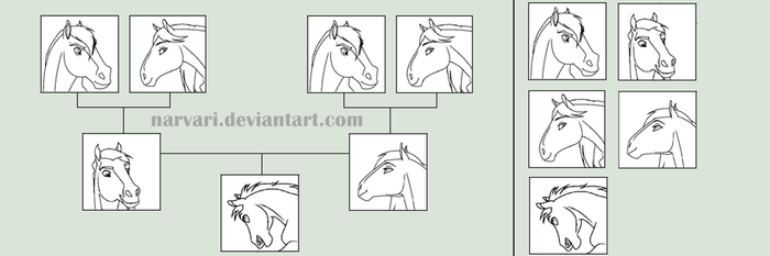 Horse Family Tree Base by Narvari